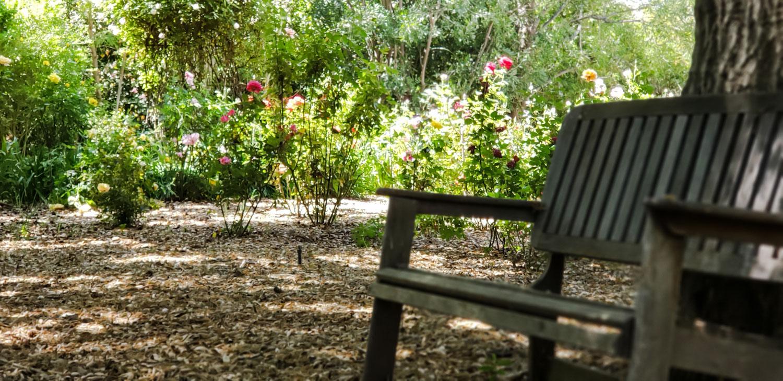 ~The Rose Garden Bench~